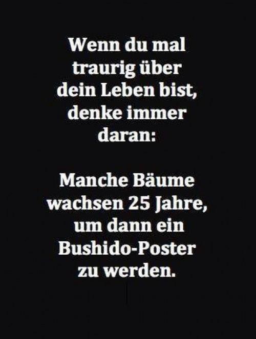 Bushido Poster.jpg