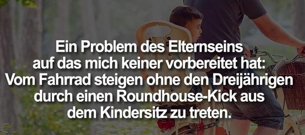 Eltern - Roundhouse-Kick.jpg