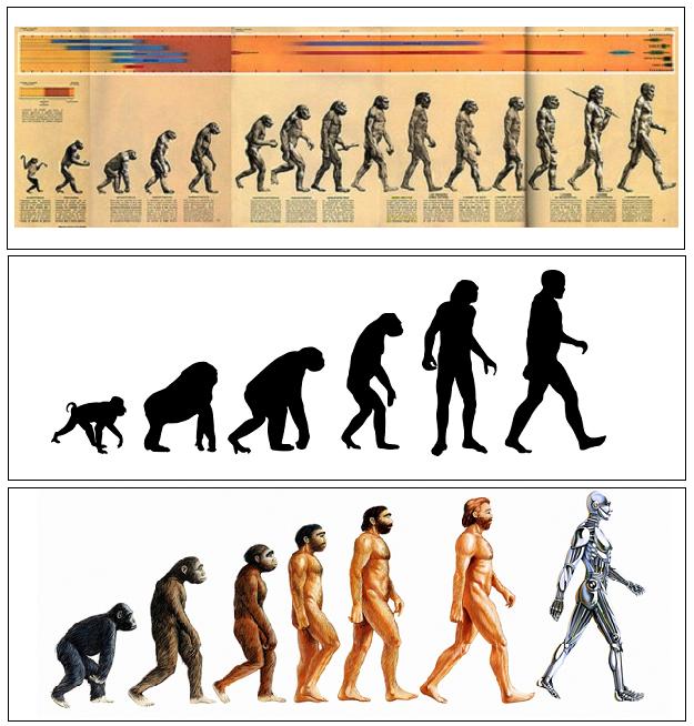 evolution.01.png