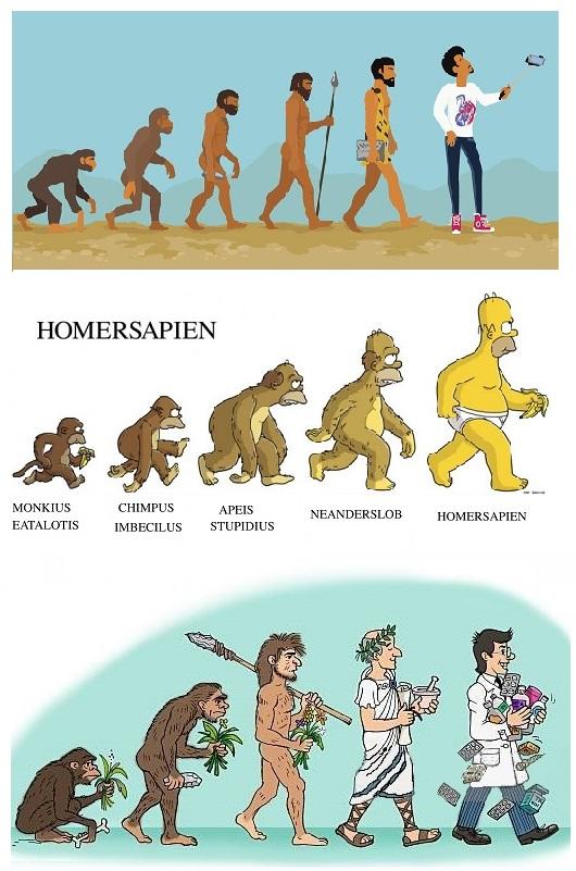 evolution.1.jpg