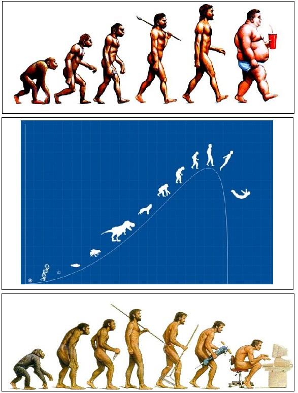 evolution.3.jpg
