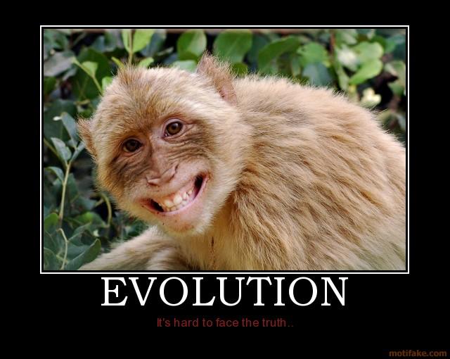 Klicke auf die Grafik für eine größere Ansicht  Name:evolution xD.jpg Hits:831 Größe:79,0 KB ID:66051