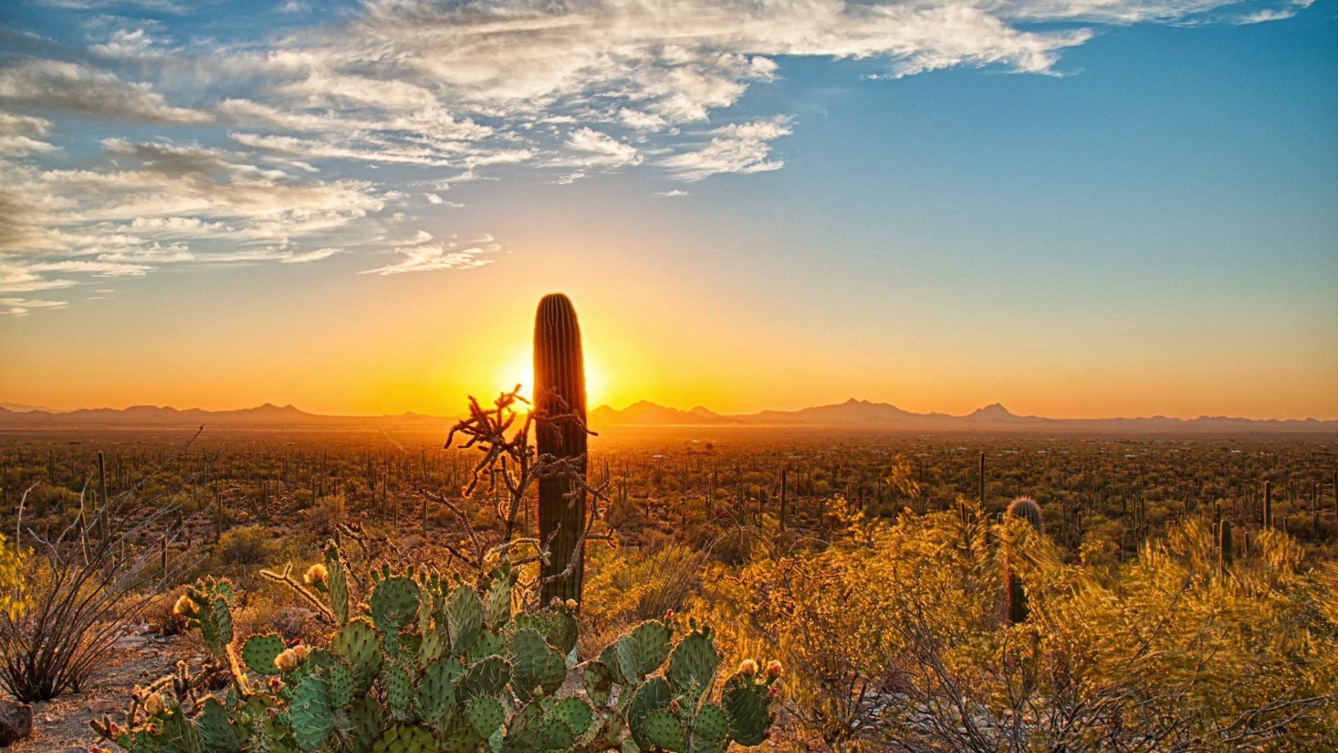 Klicke auf die Grafik für eine größere Ansicht  Name:nature_deserts_wallpapers_landscapes_1920x1080.jpg Hits:387 Größe:397,4 KB ID:78704