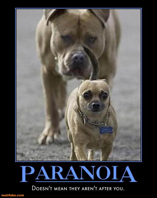 Klicke auf die Grafik für eine größere Ansicht  Name:paranoia.jpg Hits:531 Größe:61,6 KB ID:66042