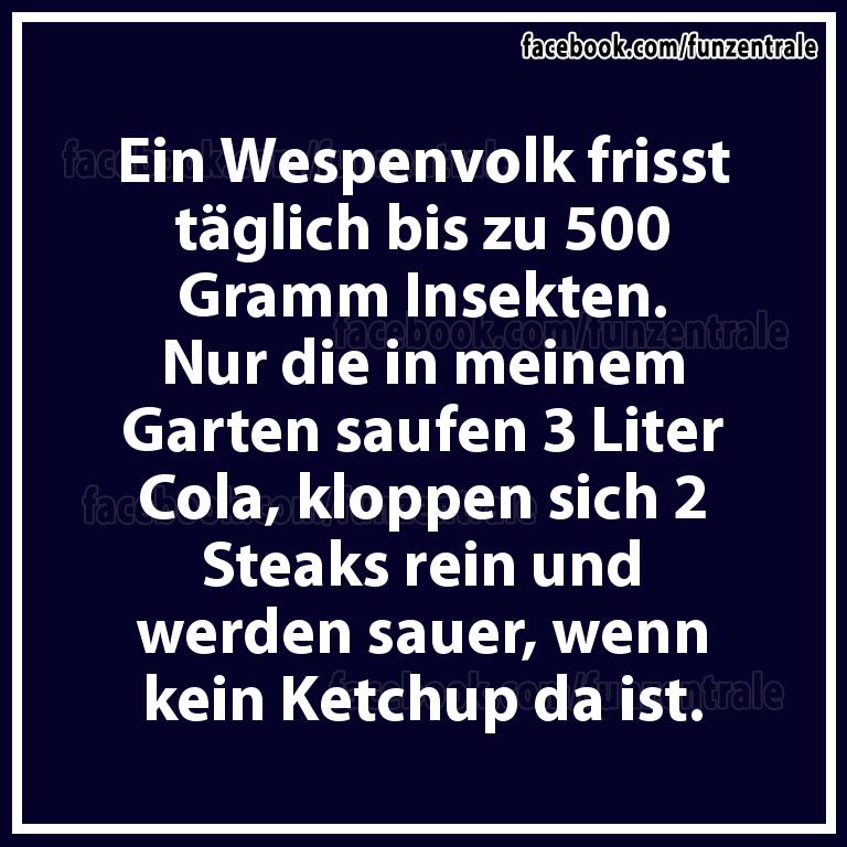 Wespen.png