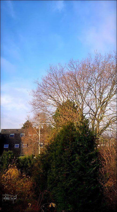 Klicke auf die Grafik für eine größere Ansicht  Name:Winterhimmel.jpg Hits:25 Größe:121,1 KB ID:89299