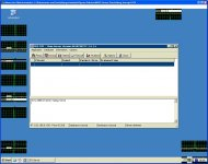 PCAnywhere-Darstellungsfehler.JPG