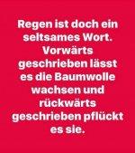 Baumwolle.jpg