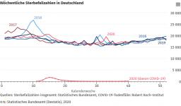 Screenshot_2020-11-03 Wöchentliche Sterbefallzahlen in Deutschland.png