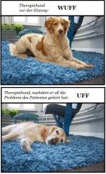 2021.01.23.thepapiehund.jpg